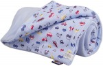 Warm baby blanket light blue cars